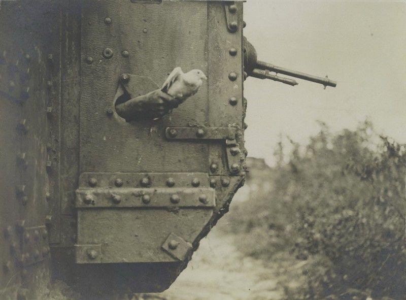 Фотоприкол бесплатно бойница, военная техника, птичка, ствол