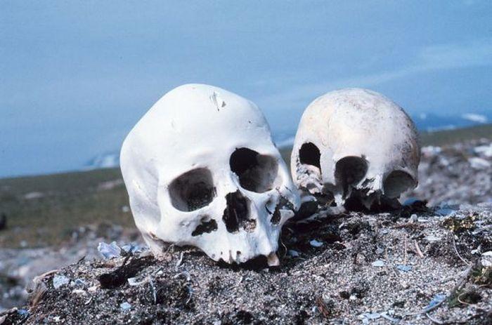 берингово море, остров, кладбище, останки, кости, жесть,