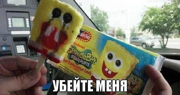 Фото онлайн губка, конфета, прикол, спанч боб