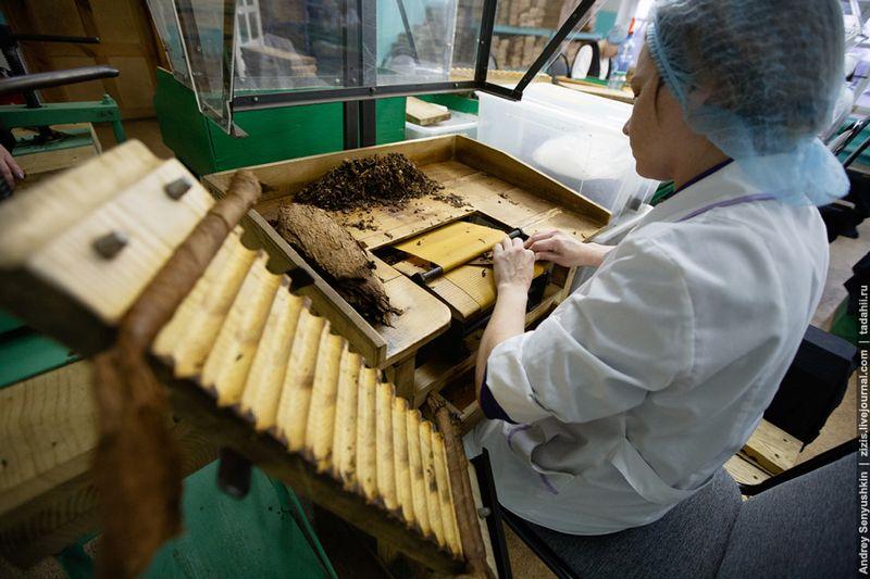 брянская область, сигареты, сигары, фабрика