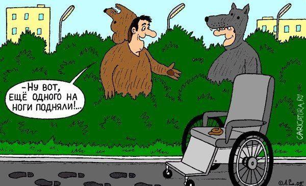 Бесплатно фото волк, инвалид, костюмы, медведь, прикол
