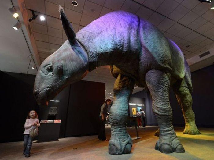 Фотожесть динозавр, животное, музей, прикол, ребенок