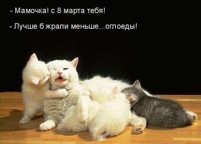 http://fishki.net/picsw/032013/07/post//8marta/8marta-0015.jpg