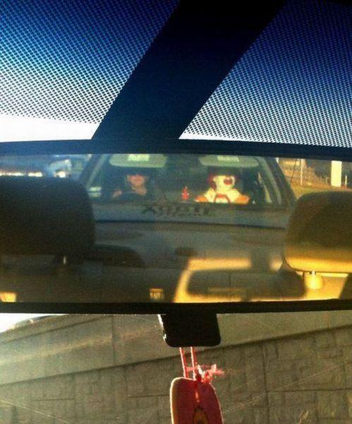 Фотоальбом в машине, водитель, зеркало, рональд макдональд