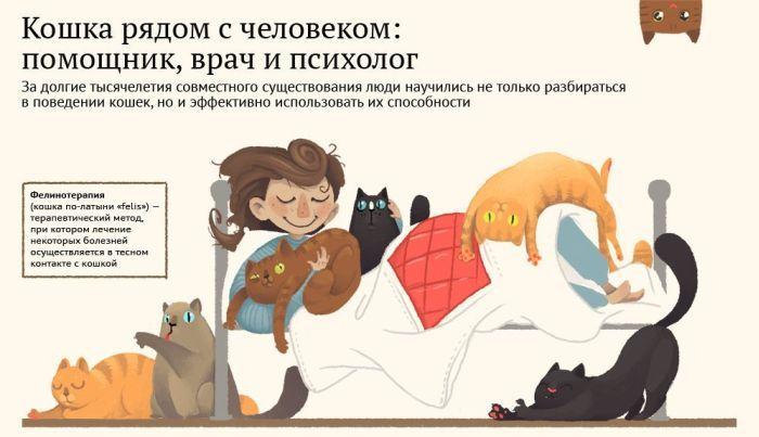 Роль котов и кошек в жизни людей (1 фото)