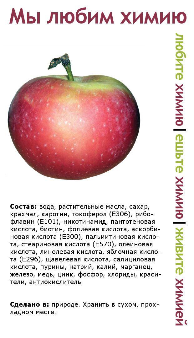 Пикантный фотоприкол интересная инфа, состав, фрукт, химия, яблоко
