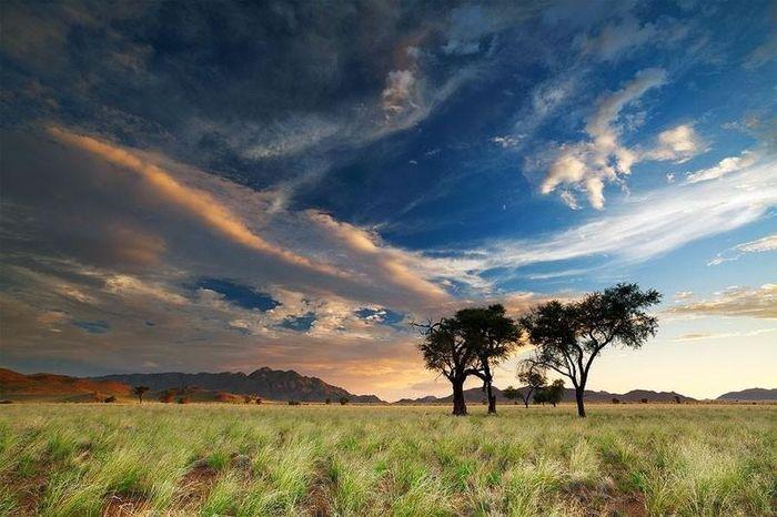 пустыня, африка, снимки
