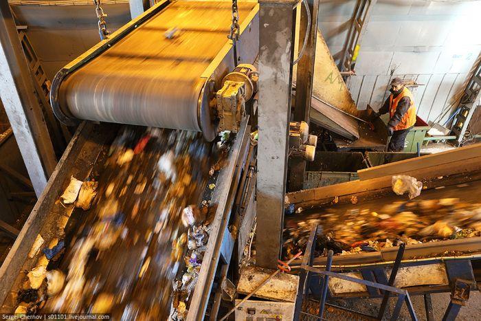 санкт-петербург, утилизация,мусор