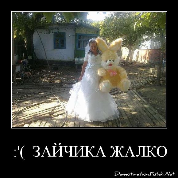 :'(  зайчика жалко !!!