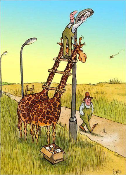 Бесплатный фотоприкол жираф, прикол, стремянка, фонарь