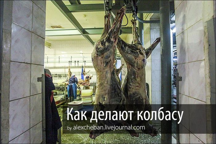 мясо, колбаса, мясокомбинат