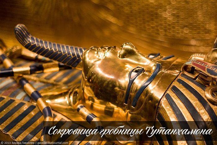 выставка, гробница, фараон, царь