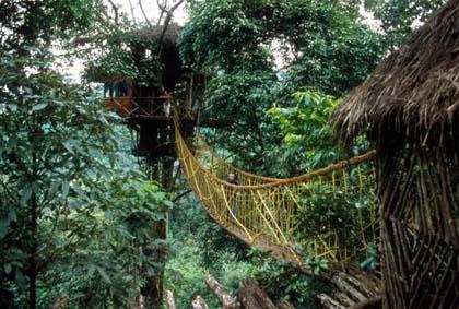 Мост между домами
