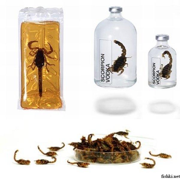 Вкусняшки из диковинных насекомых (10 фото)