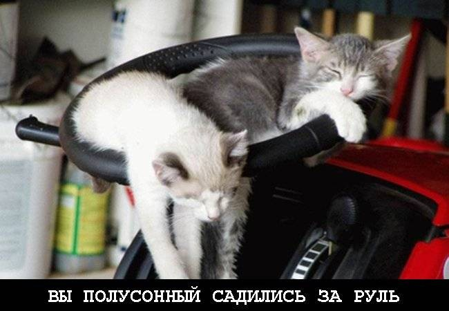 Конец трудовой недели! (8 фото)