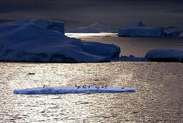 Ледяная красота Антарктиды (29 фото)