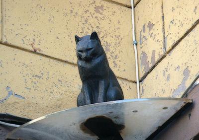 Памятник черному коту