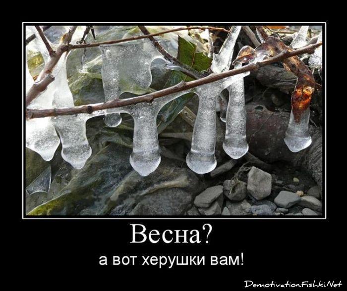 http://fishki.net/picsw/042010/02/post/demotivator/tn.jpg