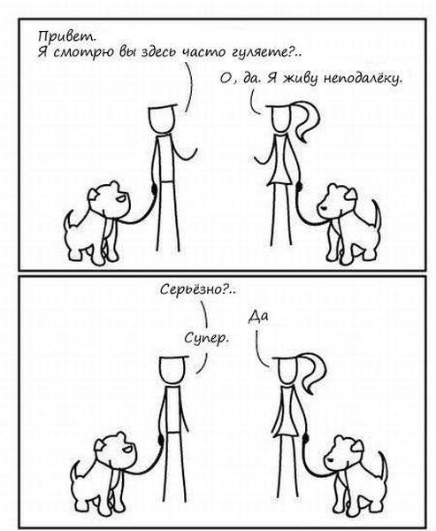 Жизнь собак и людей. Сравнение (6 фото)