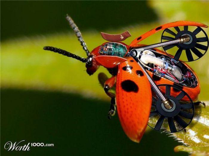 Футуристические животные и насекомые (20 фото)