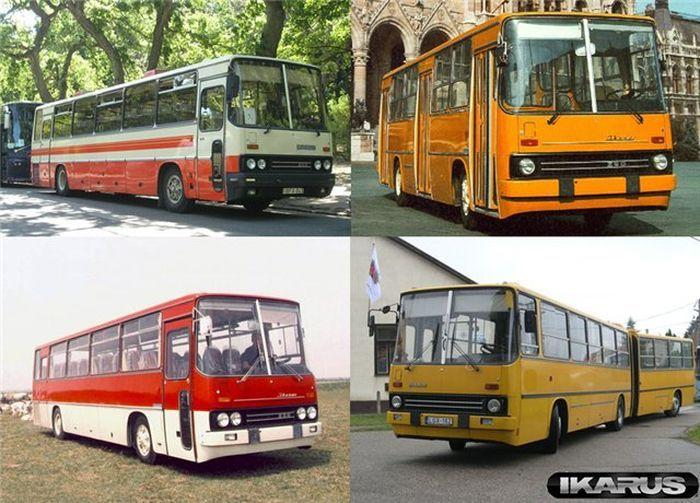 Автобусы IKARUS - экскурсия в прошлое (53 фото)