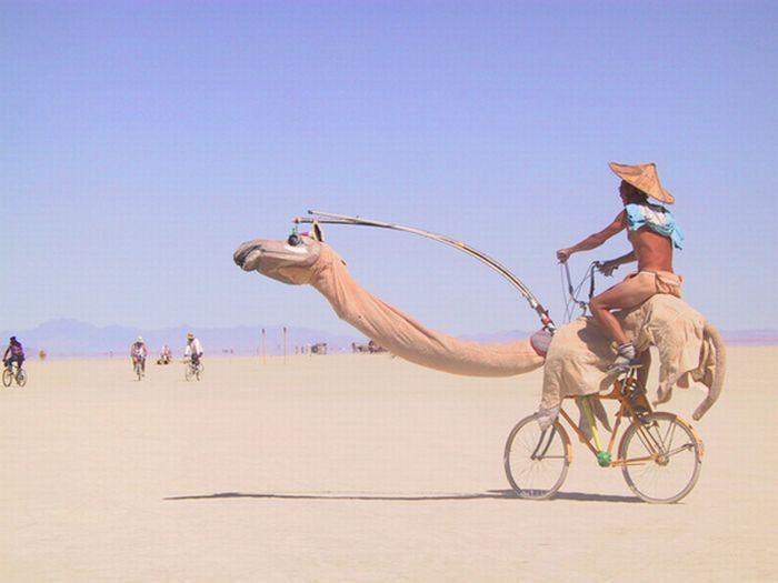 Самые странные велосипеды (30 фото)