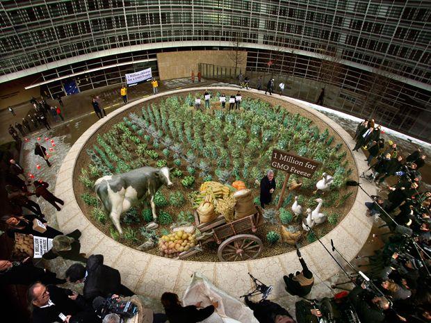 Миллион подписей в Брюсселе, Бельгия, в ноябре 2010 года. Европейской комиссии предоставили <br> миллион подписей с просьбой продолжить дополнительное изучение генетически модифицированных <br> культур.