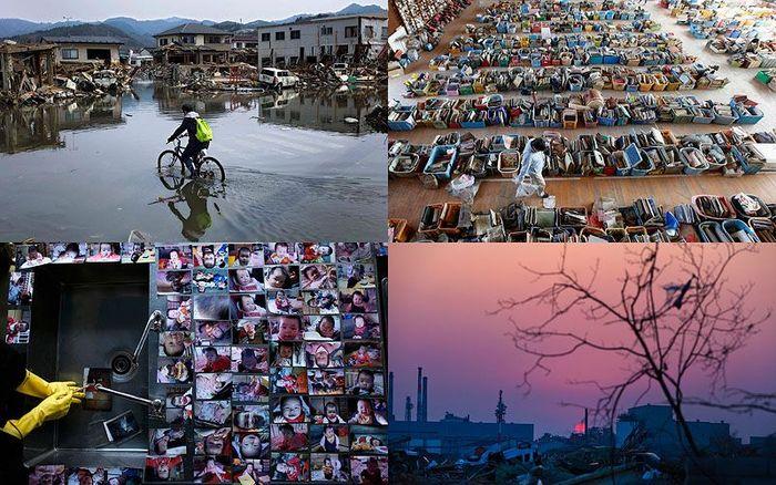 Японский кризис – месяц спустя (36 фото)