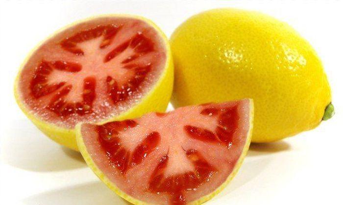 Гибриды овощей и фруктов (20 Фото)