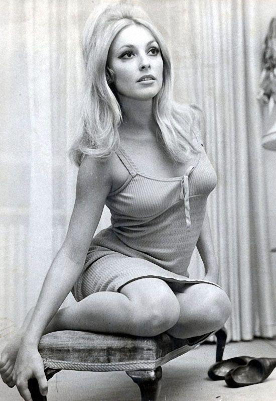 Шерон Тэйт играла небольшие роли на телевидении в 60-ых, а потом появилась в нескольких фильмах на большом экране. (REX FEATURES)