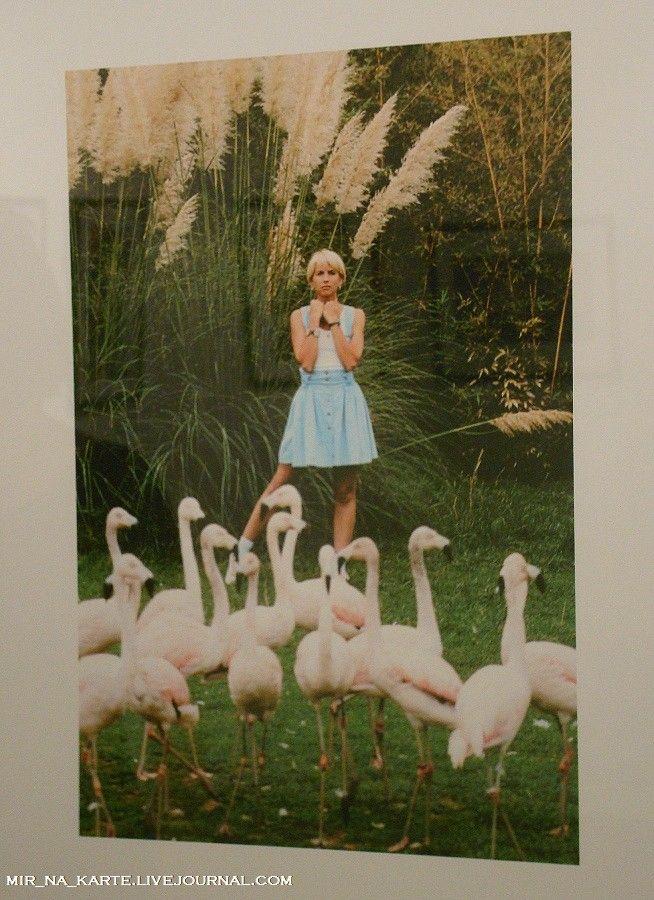 59. Алена Свиридова, 1994 год