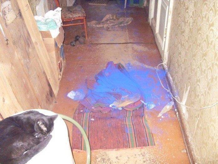 Банка с краской была найдена (7 фото)