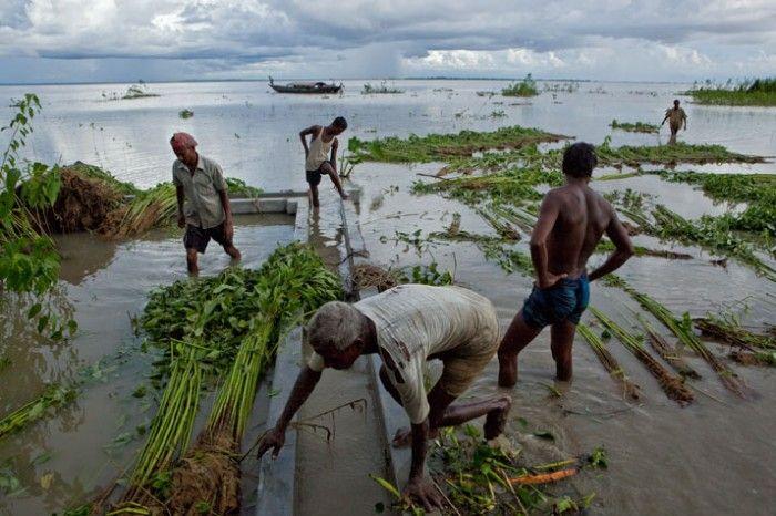 Люди, живущие на воде (20 фото)