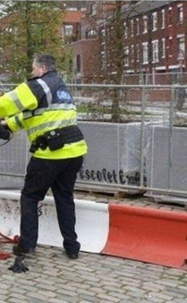 Конь положил на полицейского (2 фото)