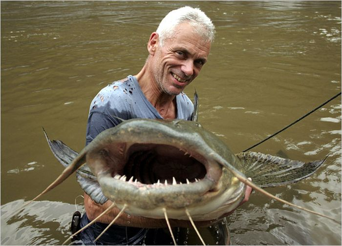 Monsters that are found in rivers (111 photos)