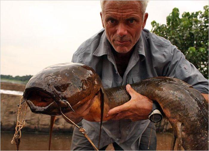 Монстры, которые водятся в реках (111 фото)