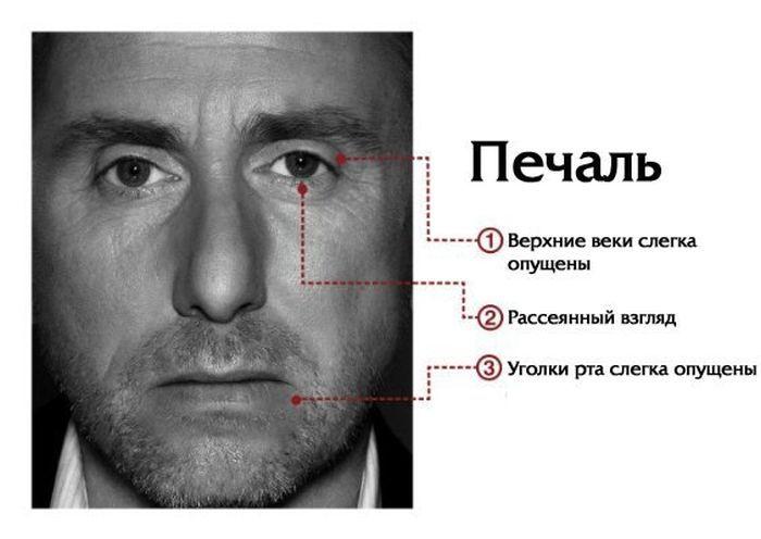 Мимика лица говорит о многом (7 фото)