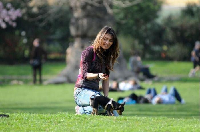 Рози Дилеттузо выгуливает своего песика (17 фото)