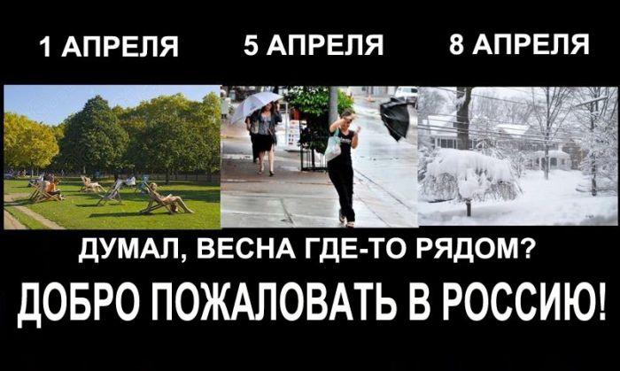 Бесплатный фотоприкол