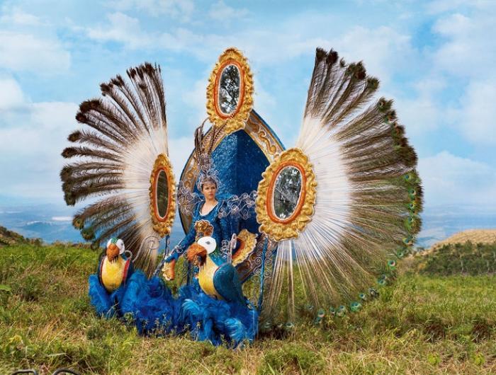 В солнечной Бразилии, Бразилии моей, такое изобилие невиданных зверей (с) (8 фото)