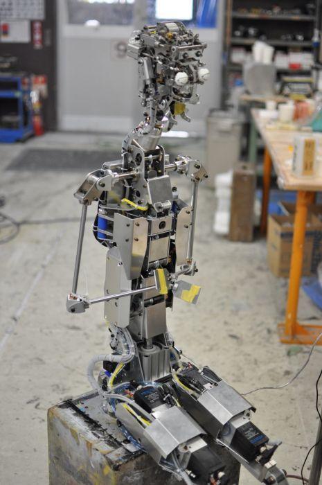 Робот с человеческим лицом (15 фото + 1 видео)