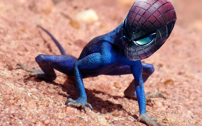Фанни фото рептилия, человек паук, ящерица
