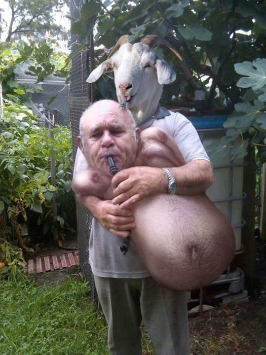 Фотоприкол онлайн бесплатно волынка, коза, мужик, прикол