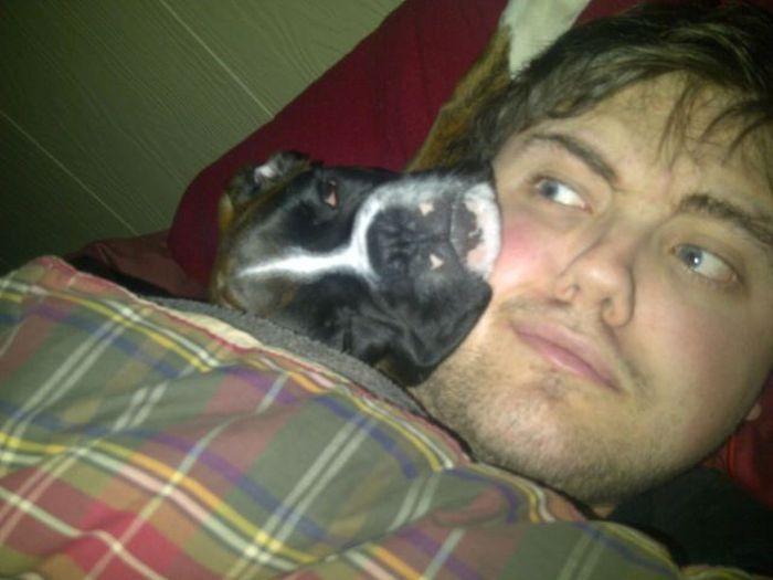 Отпадные фотки лежит, собака и хозяин, спят вместе