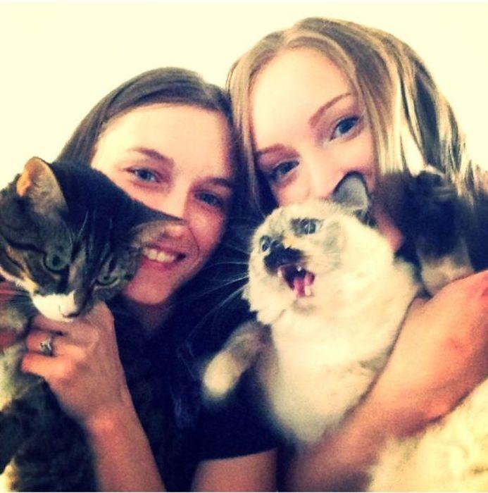 Фотоприкол онлайн выражение лица, девушки, кот, питомцы