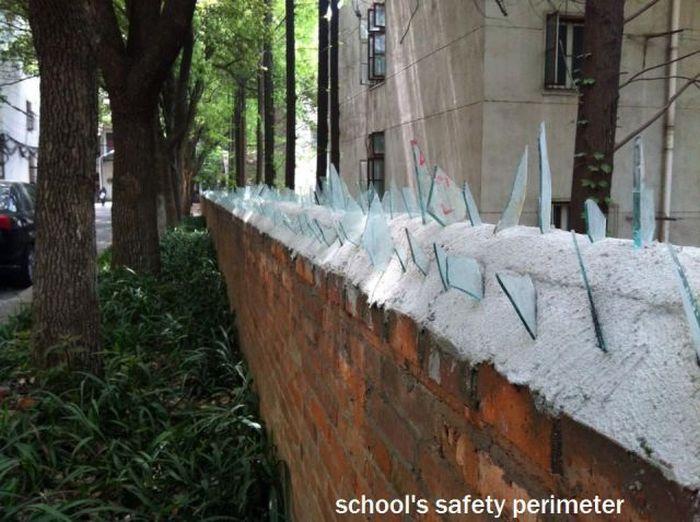 Смешная фотогалерея жесть, забор, стекла, школа