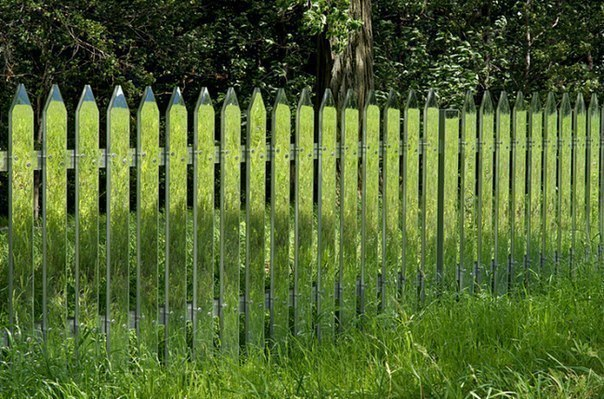 Улетное фото забор, круто, лужайка, прозрачный