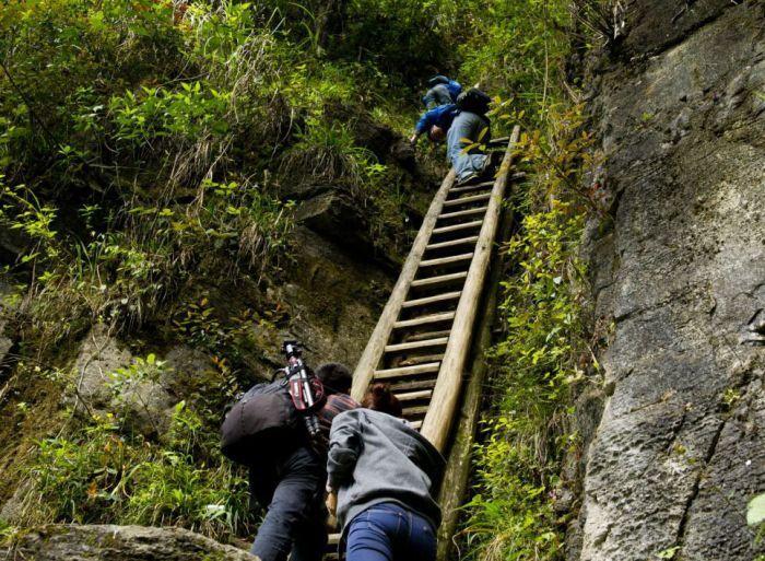 горы, школа, дети, лестница