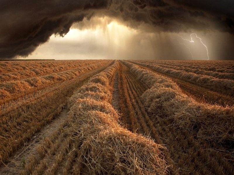 Пикантный фотоприкол буря, красивая фотография, поле, шторм