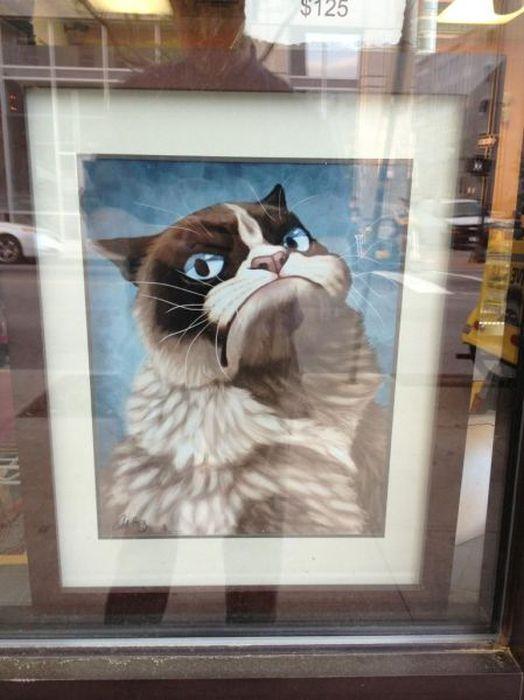 Фотография выражение лица, картина, кот, рисунок